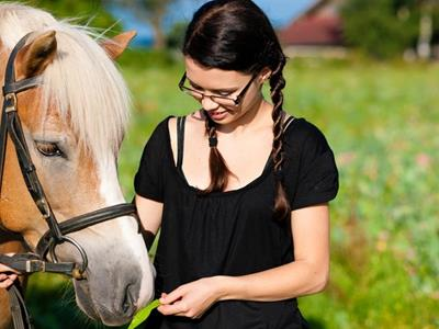 Donation to a charity for equine-assisted therapies