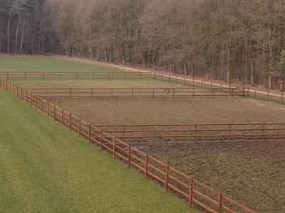 "New equestrian fencing for the horse riding centre ""Sentower Park"" in Belgium"