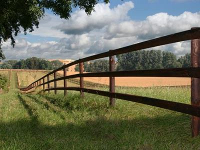 Agricultural fence - Agricultural fencing for horses: How can it be preserved?