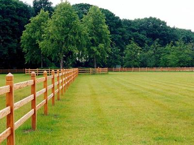 Agricultural fencing - Agricultural fencing for horses: How can it be preserved?